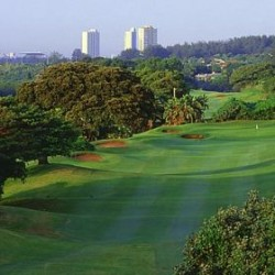 Durban Beachwood